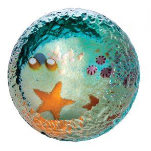 Seabed - Starfish