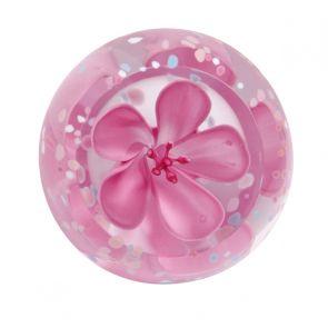 Blossom - Rose