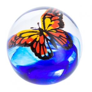 Butterfly - Flight of the Monarch