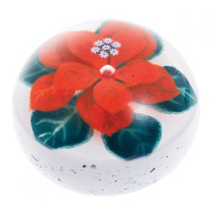 Winter Poinsettia